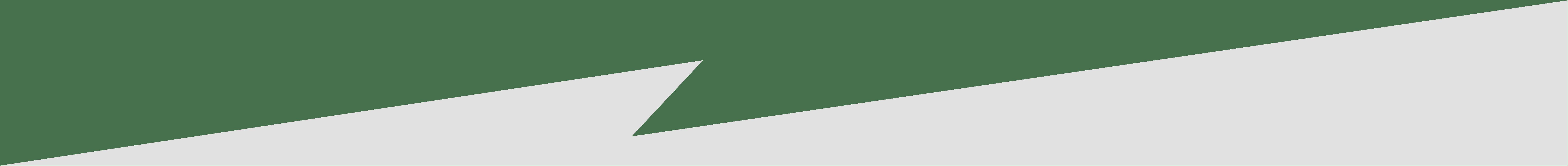 Bolt-divider-E1-png